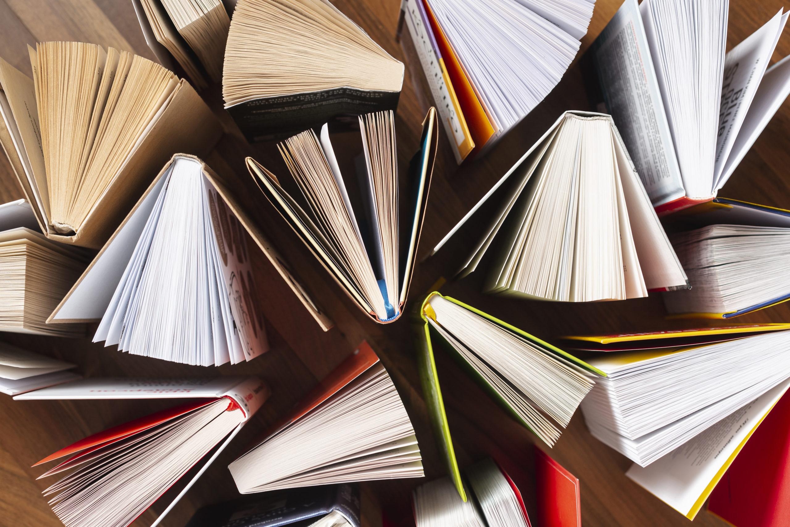 14 livres lus dans le cadre de Mon défi lecture 2017 – 1 livre par mois